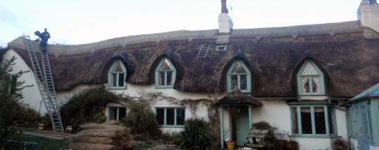 South Molton Straw Roofing